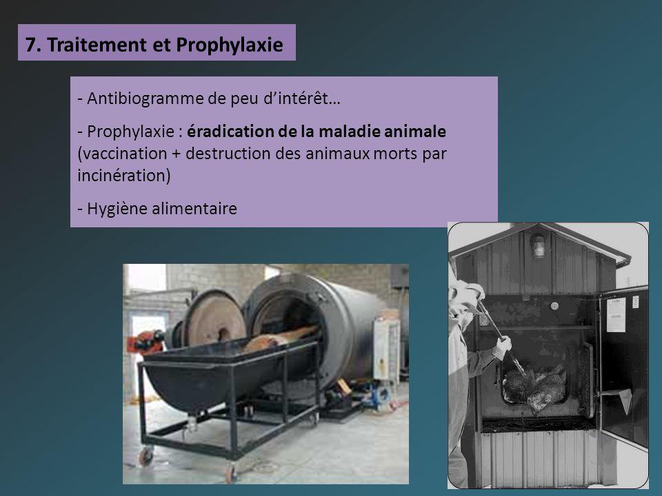7. Traitement et Prophylaxie