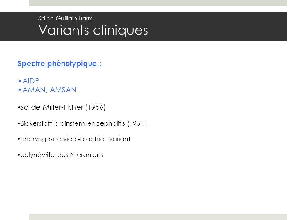 Spectre phénotypique : AIDP AMAN, AMSAN Sd de Miller-Fisher (1956)
