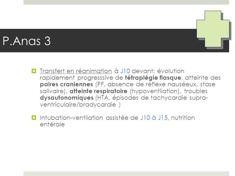 P.Anas 3