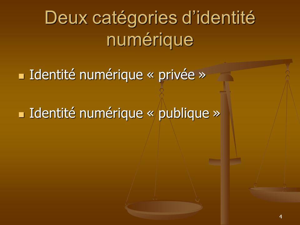Deux catégories d'identité numérique