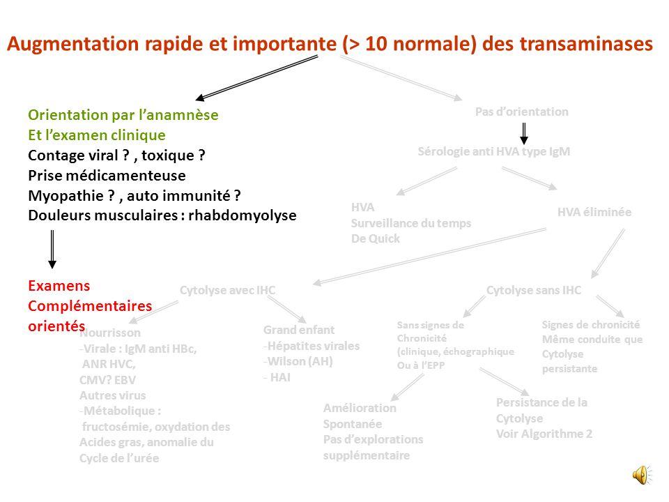 Augmentation rapide et importante (> 10 normale) des transaminases
