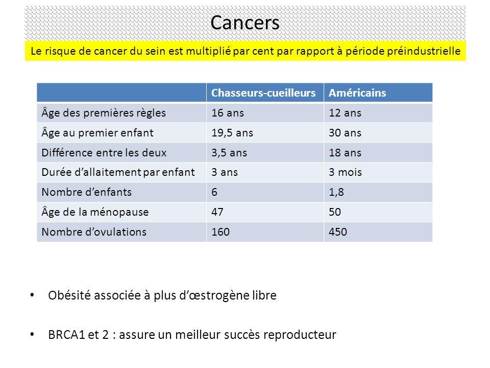 Cancers Obésité associée à plus d'œstrogène libre