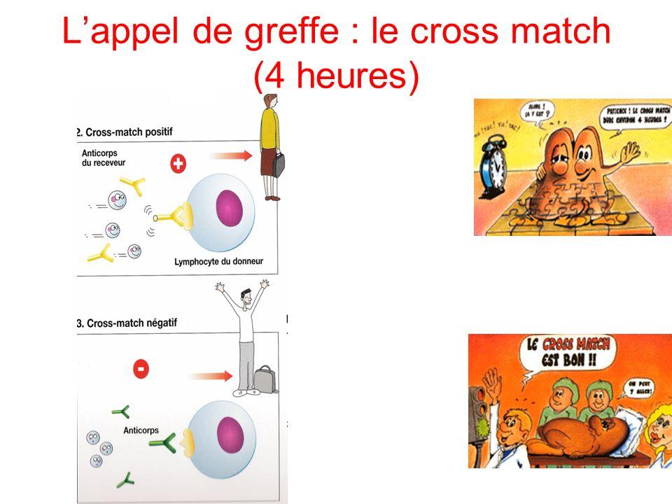 L'appel de greffe : le cross match (4 heures)