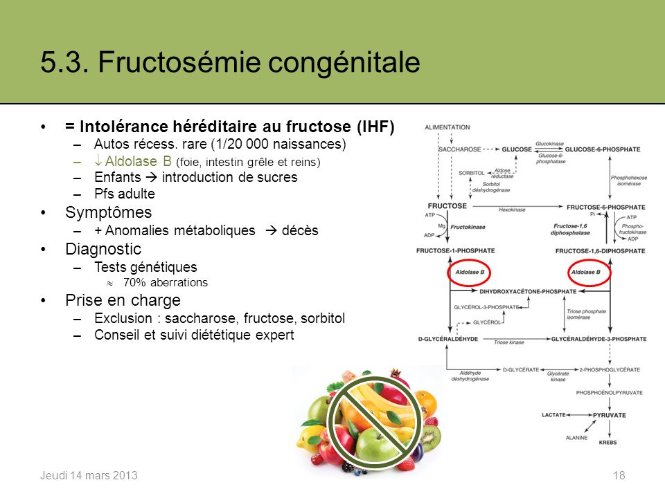 5.3. Fructosémie congénitale