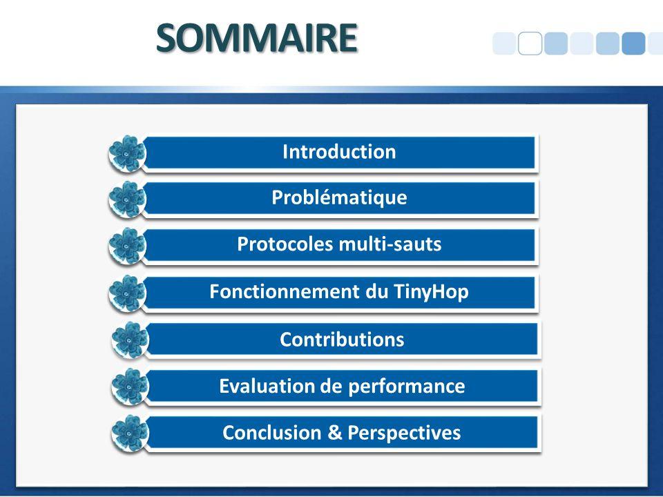 SOMMAIRE Introduction Problématique Protocoles multi-sauts