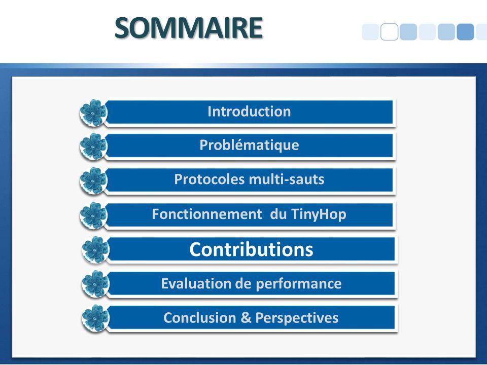 SOMMAIRE Contributions Introduction Problématique