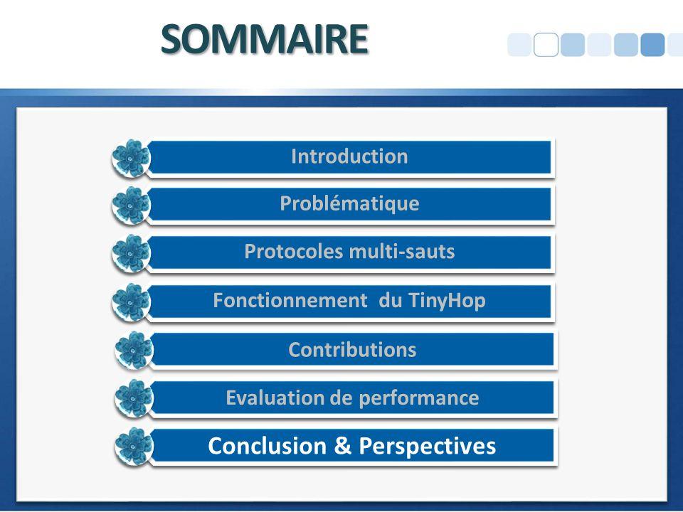 SOMMAIRE Conclusion & Perspectives Introduction Problématique