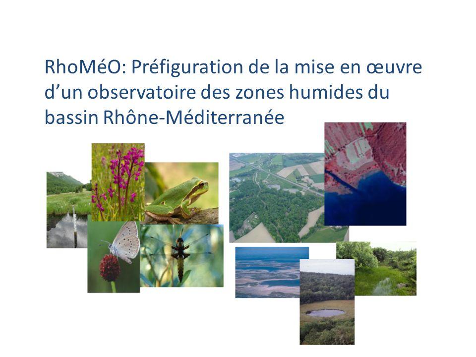 RhoMéO: Préfiguration de la mise en œuvre d'un observatoire des zones humides du bassin Rhône-Méditerranée