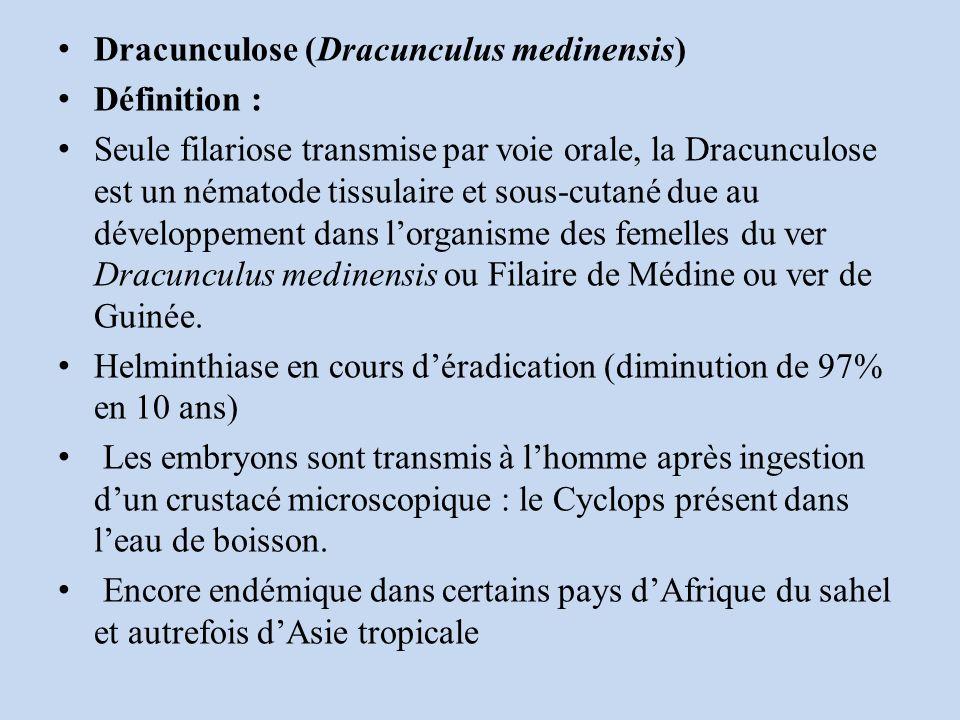 Dracunculose (Dracunculus medinensis)