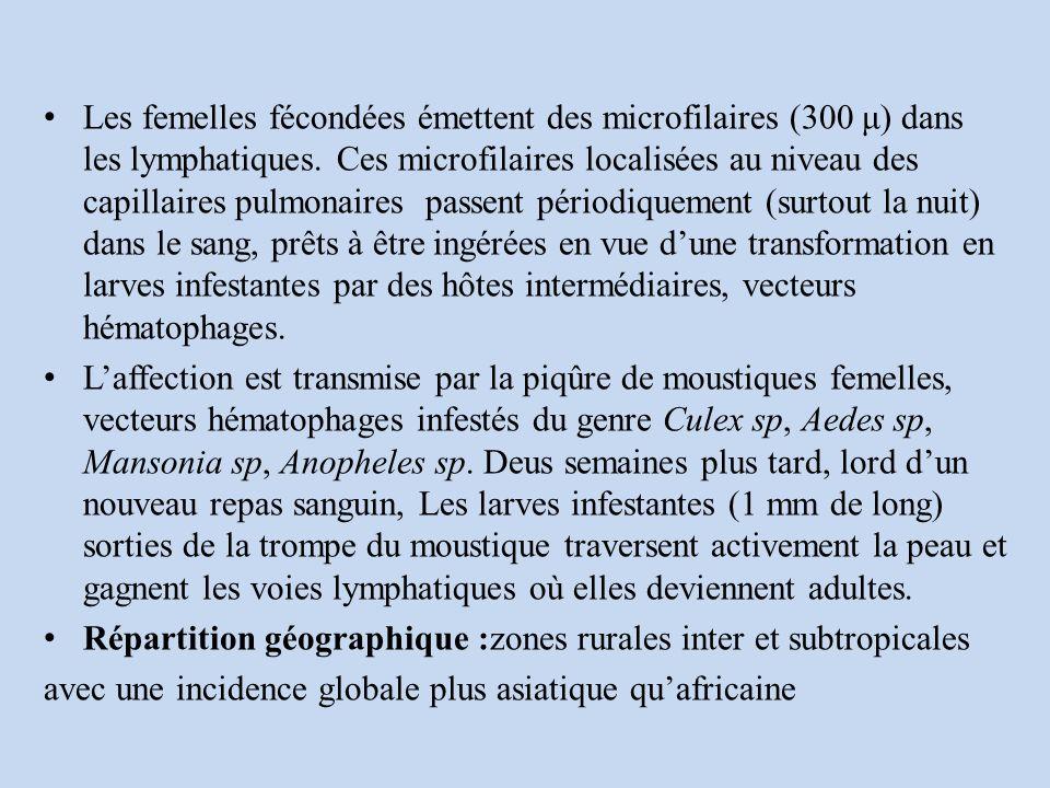 Les femelles fécondées émettent des microfilaires (300 μ) dans les lymphatiques. Ces microfilaires localisées au niveau des capillaires pulmonaires passent périodiquement (surtout la nuit) dans le sang, prêts à être ingérées en vue d'une transformation en larves infestantes par des hôtes intermédiaires, vecteurs hématophages.