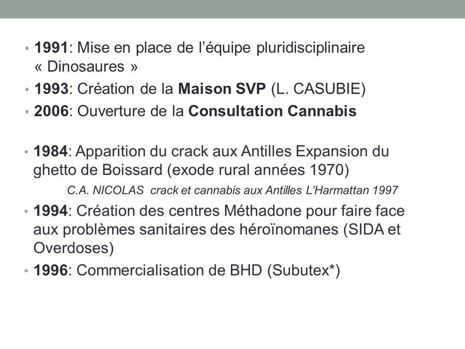 1991: Mise en place de l'équipe pluridisciplinaire « Dinosaures »