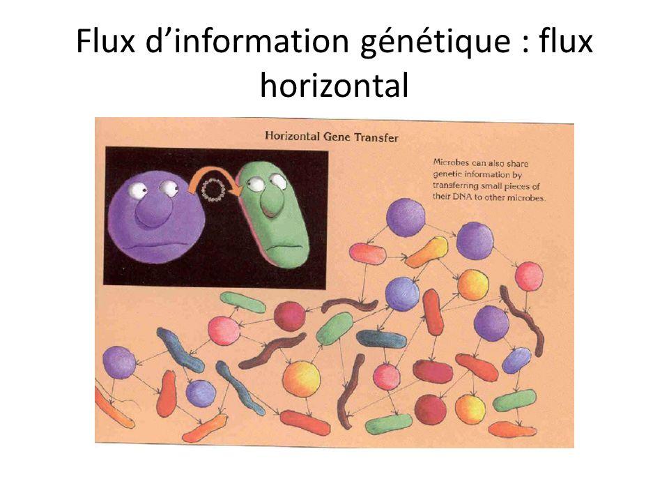 Flux d'information génétique : flux horizontal
