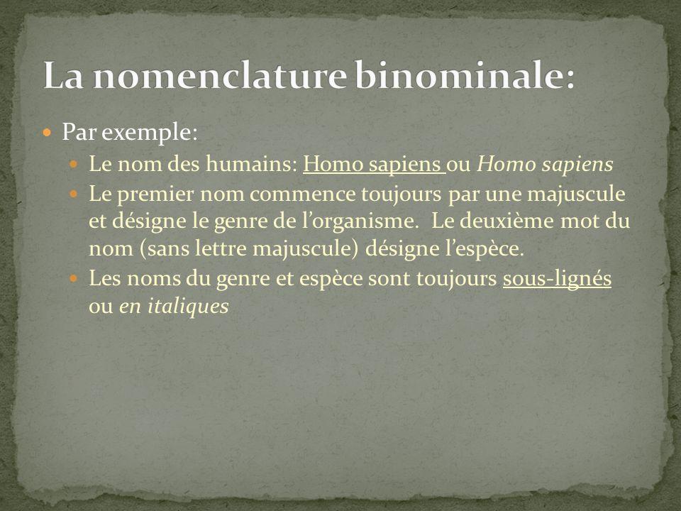 La nomenclature binominale: