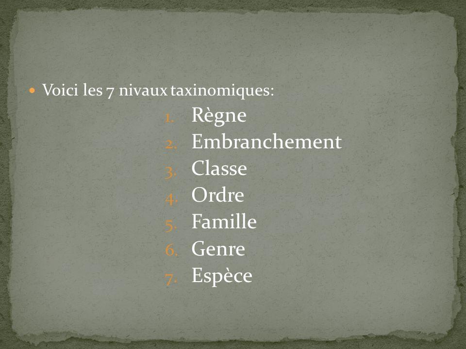 Règne Embranchement Classe Ordre Famille Genre Espèce