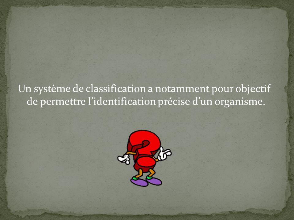 Un système de classification a notamment pour objectif de permettre l'identification précise d'un organisme.
