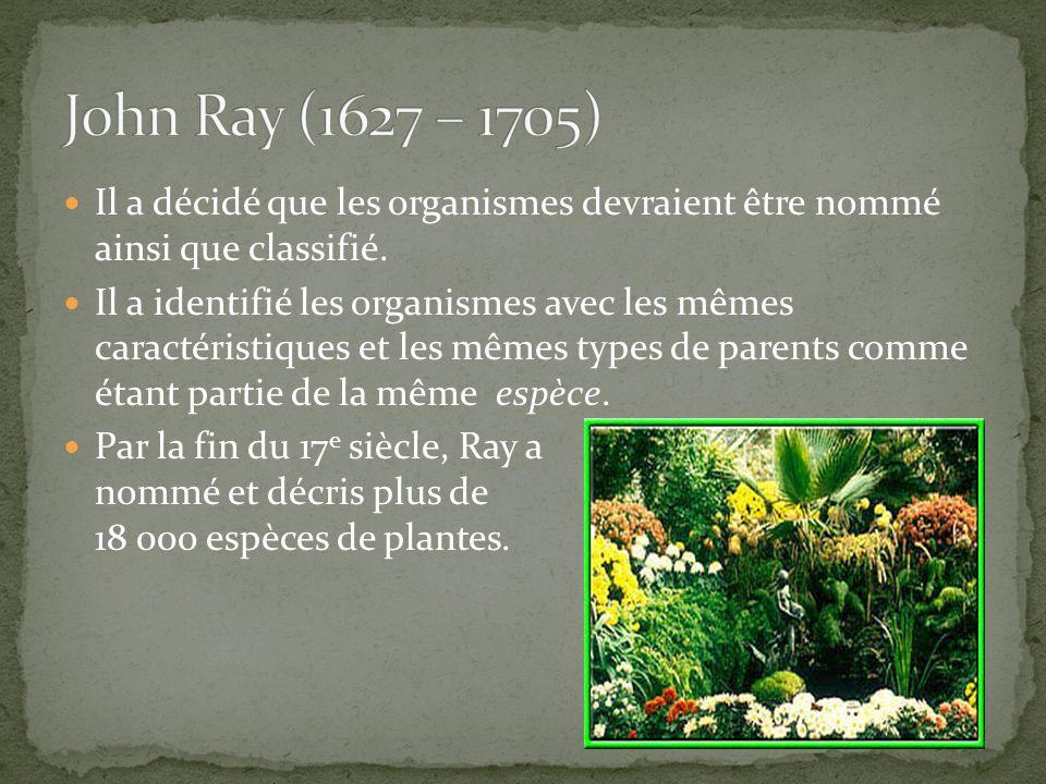 John Ray (1627 – 1705) Il a décidé que les organismes devraient être nommé ainsi que classifié.