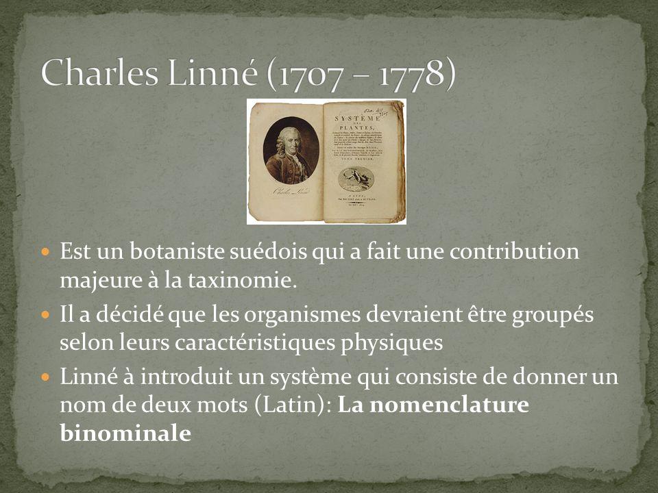 Charles Linné (1707 – 1778) Est un botaniste suédois qui a fait une contribution majeure à la taxinomie.