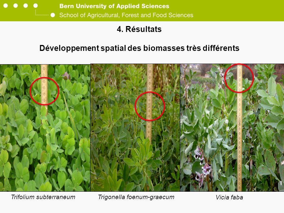 4. Résultats Développement spatial des biomasses très différents