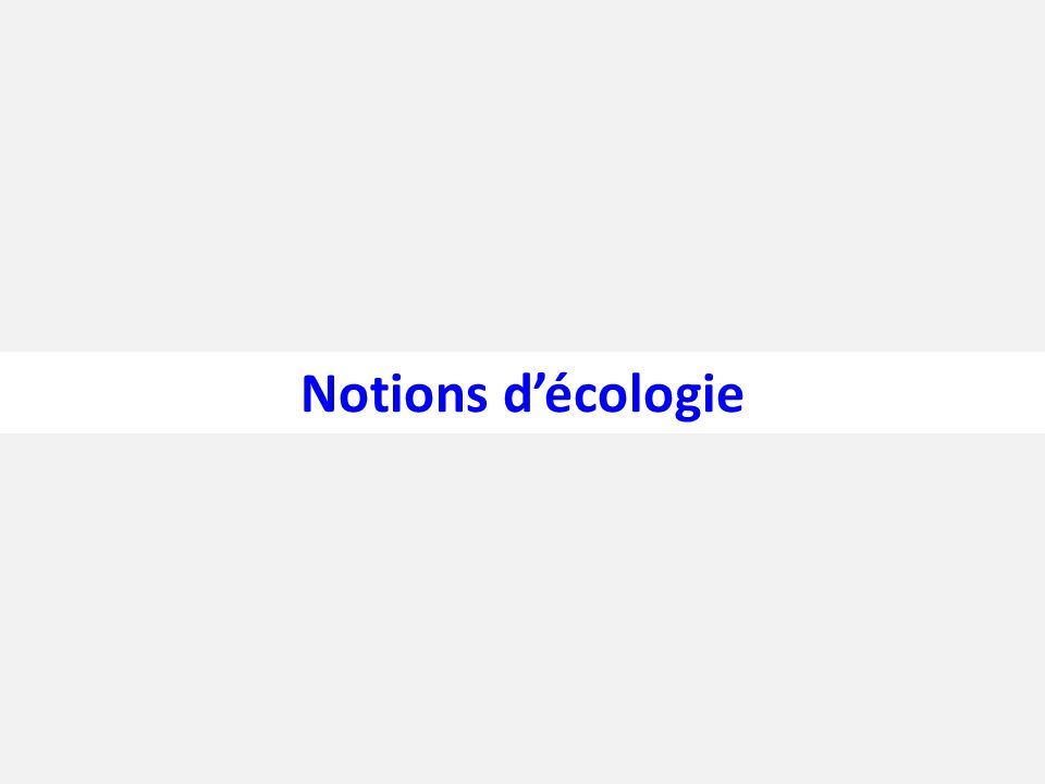 Notions d'écologie