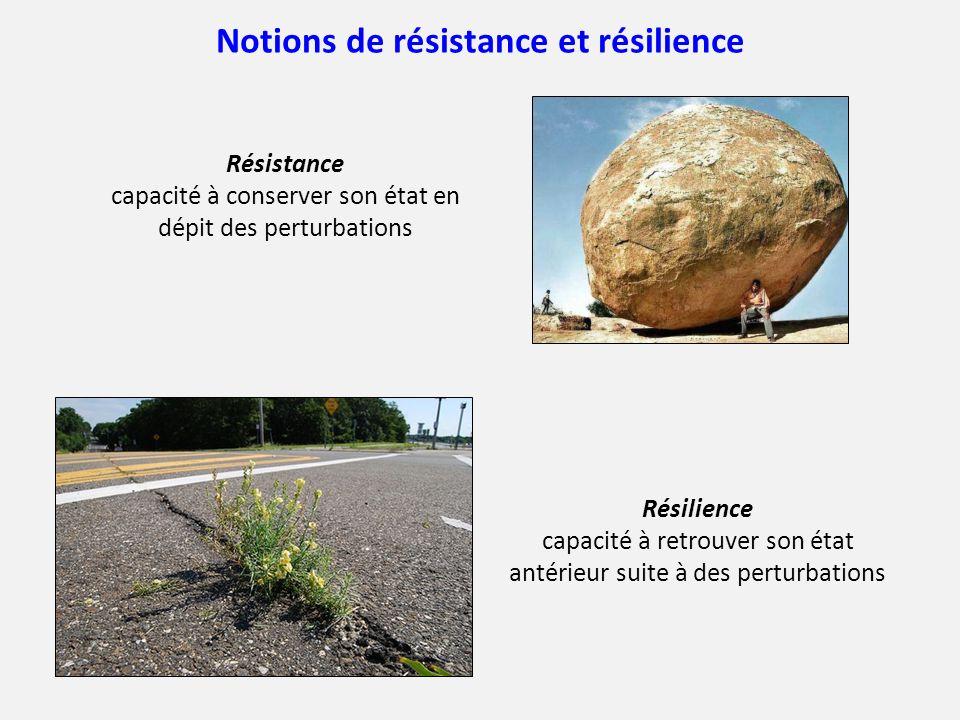 Notions de résistance et résilience
