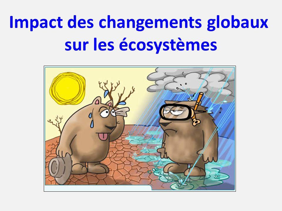 Impact des changements globaux