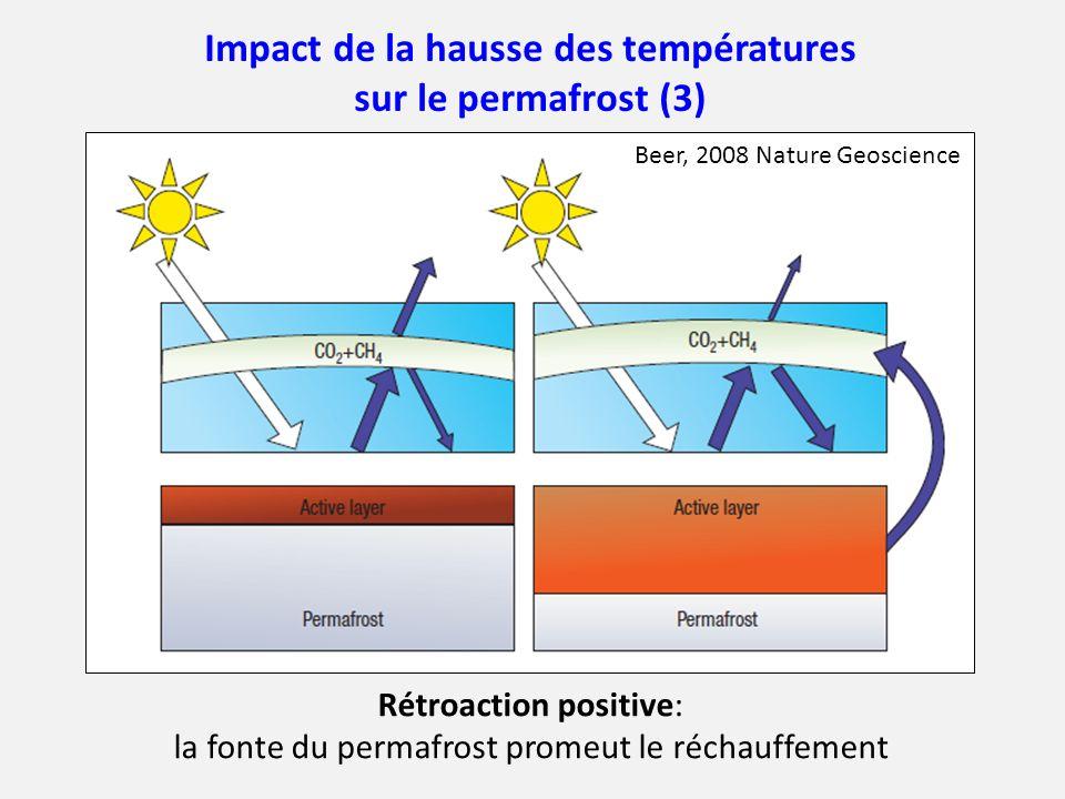 Impact de la hausse des températures sur le permafrost (3)