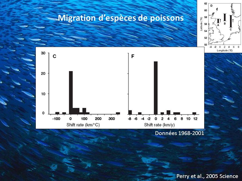 Migration d'espèces de poissons