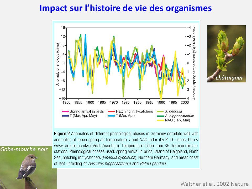 Impact sur l'histoire de vie des organismes