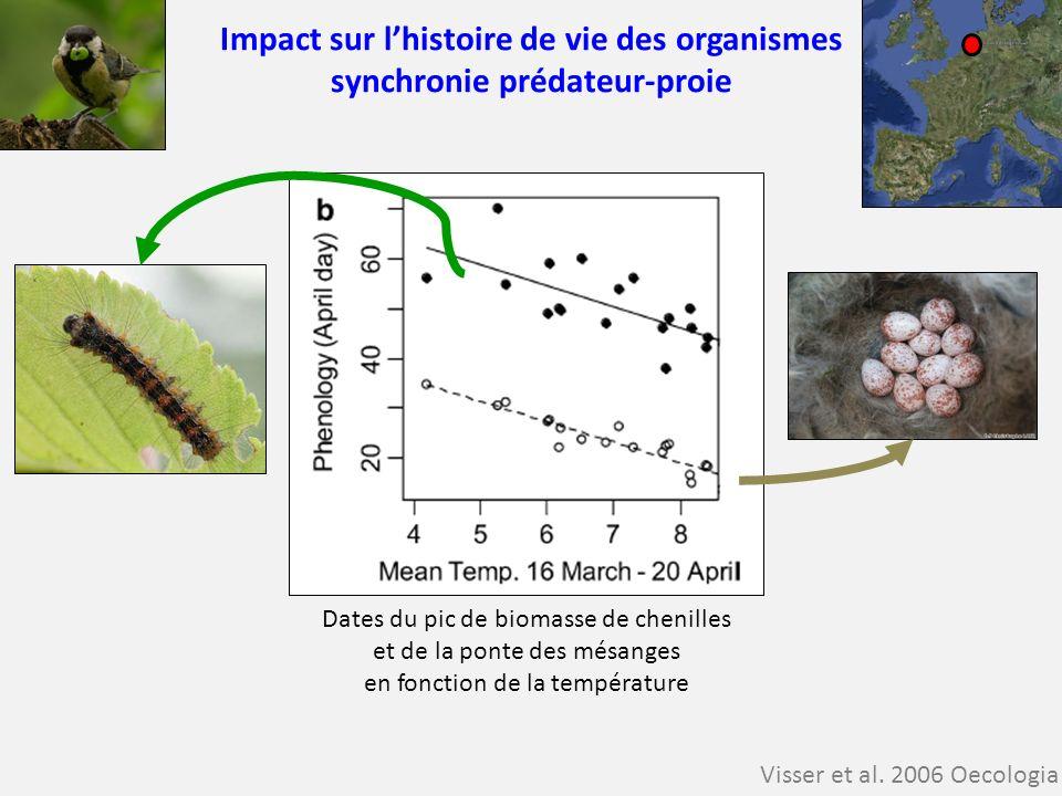 Impact sur l'histoire de vie des organismes synchronie prédateur-proie