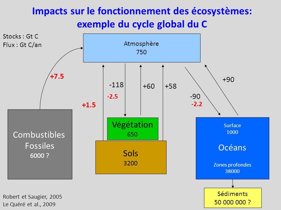Impacts sur le fonctionnement des écosystèmes: