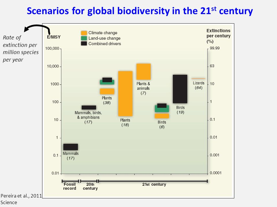 Scenarios for global biodiversity in the 21st century