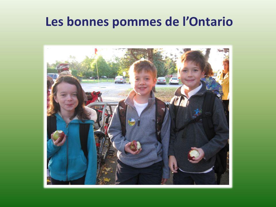 Les bonnes pommes de l'Ontario