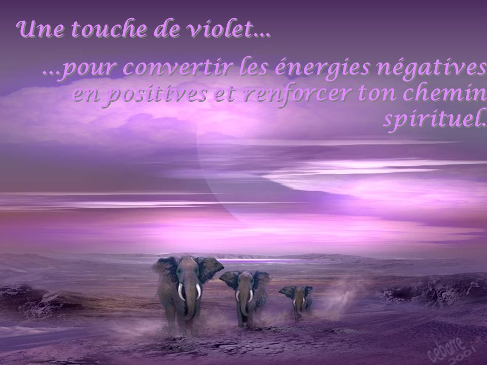 Une touche de violet...