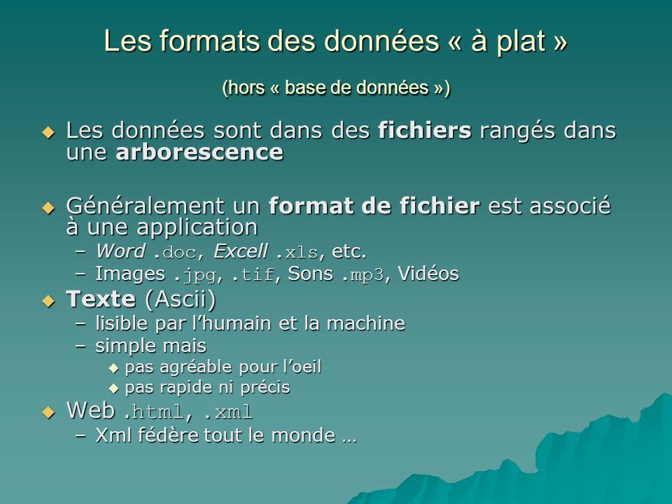 Les formats des données « à plat » (hors « base de données »)