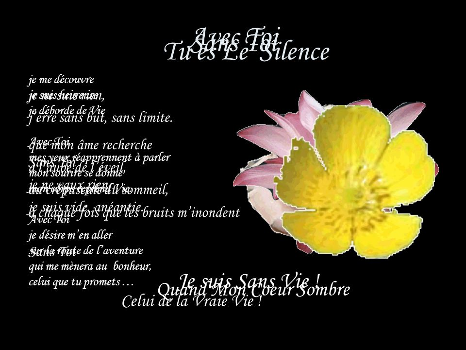Tu es Le Silence Avec Toi Sans Toi Je suis Sans Vie !