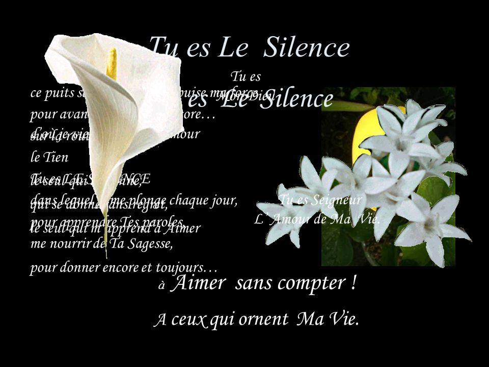 Tu es Le Silence Tu es Le Silence A ceux qui ornent Ma Vie. Tu es