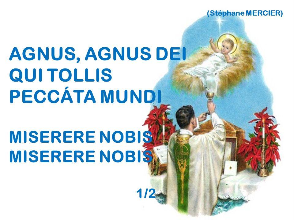 AGNUS, AGNUS DEI QUI TOLLIS PECCÁTA MUNDI MISERERE NOBIS 1/2
