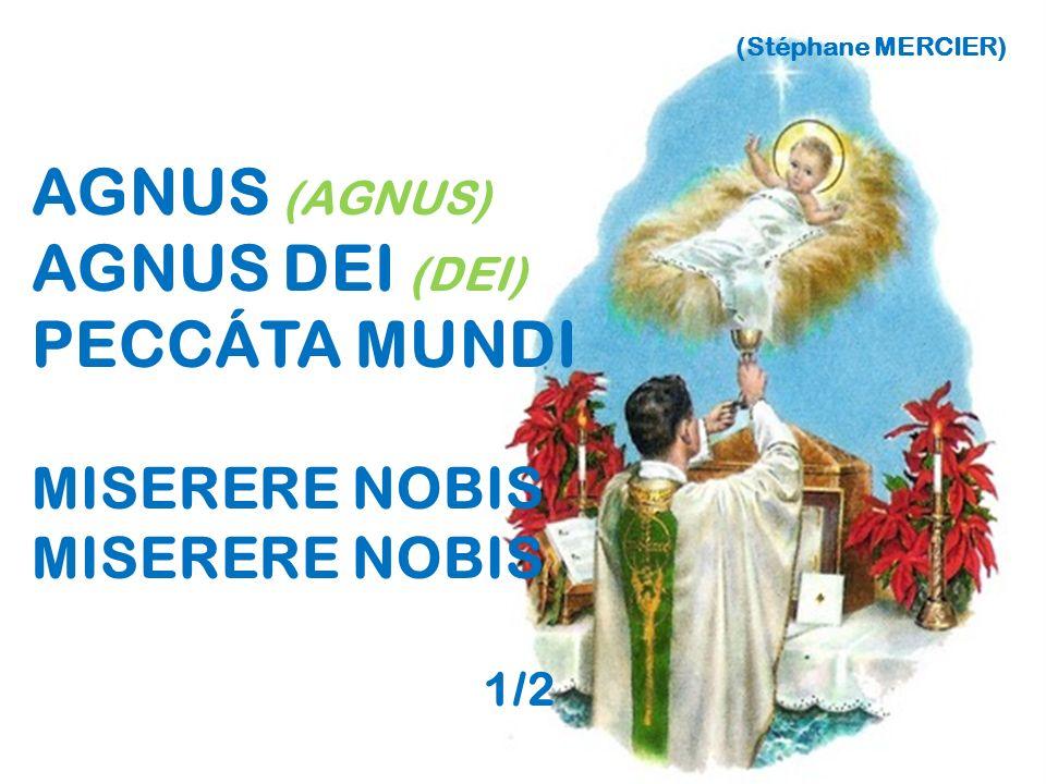 AGNUS (AGNUS) AGNUS DEI (DEI) PECCÁTA MUNDI MISERERE NOBIS 1/2
