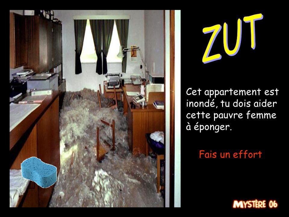 ZUT Cet appartement est inondé, tu dois aider cette pauvre femme à éponger. Fais un effort