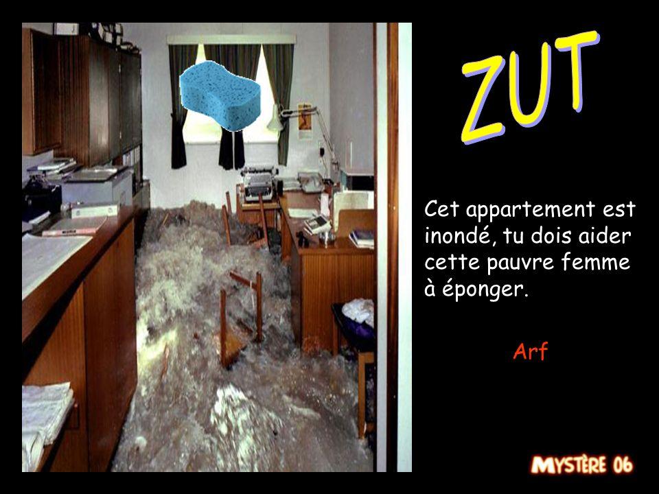 ZUT Cet appartement est inondé, tu dois aider cette pauvre femme à éponger. Arf