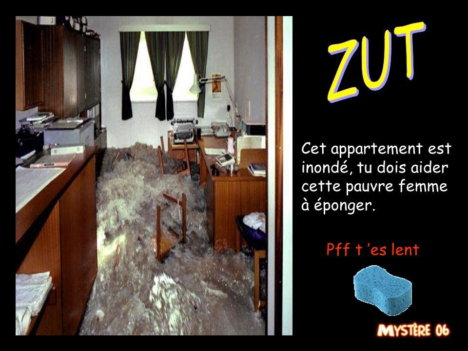 ZUT Cet appartement est inondé, tu dois aider cette pauvre femme à éponger. Pff t 'es lent
