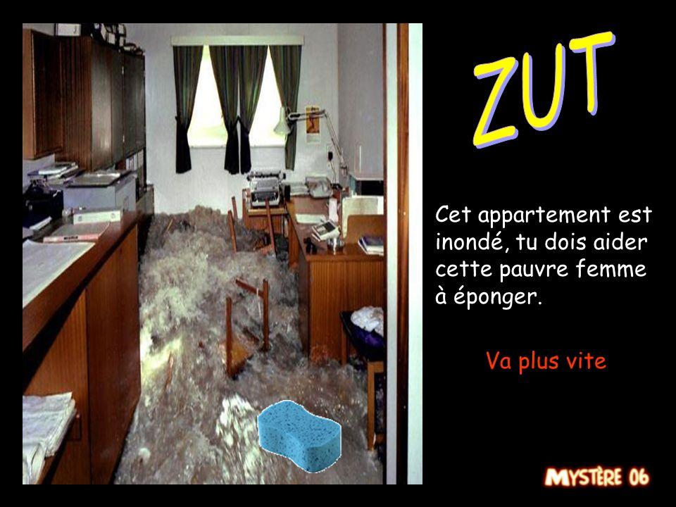 ZUT Cet appartement est inondé, tu dois aider cette pauvre femme à éponger. Va plus vite