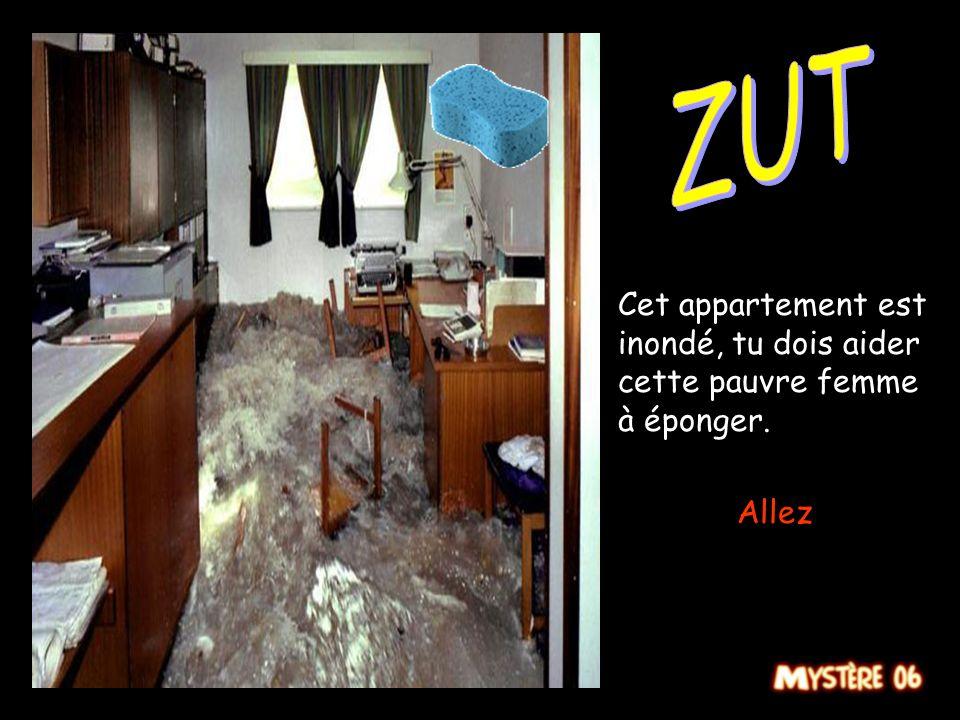 ZUT Cet appartement est inondé, tu dois aider cette pauvre femme à éponger. Allez