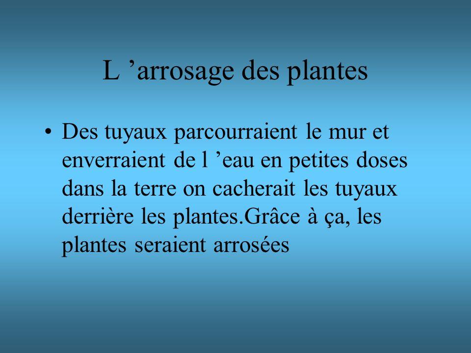 L 'arrosage des plantes