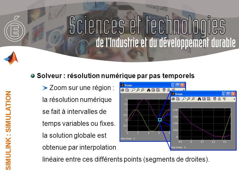 Solveur : résolution numérique par pas temporels Zoom sur une région :