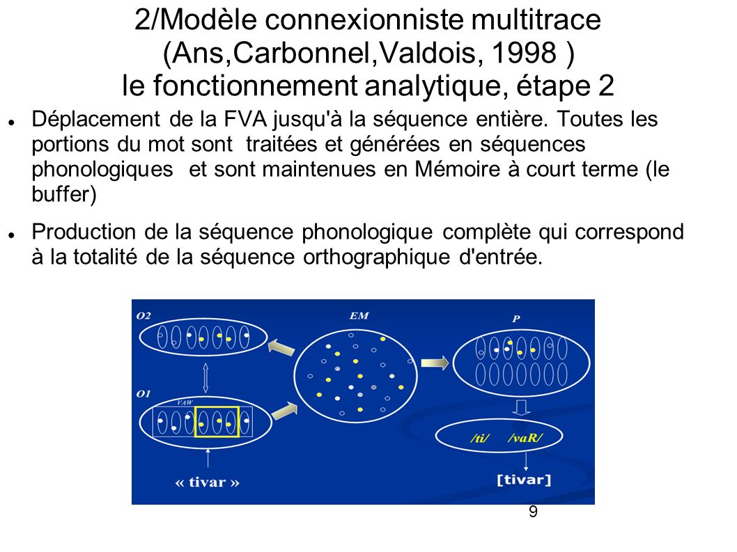 2/Modèle connexionniste multitrace (Ans,Carbonnel,Valdois, 1998 ) le fonctionnement analytique, étape 2