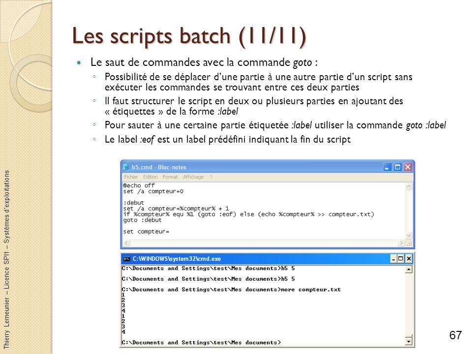 Les scripts batch (11/11) Le saut de commandes avec la commande goto :