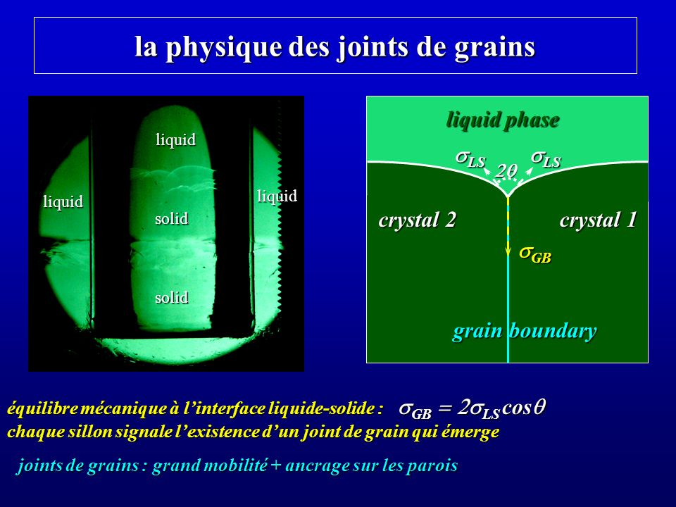 la physique des joints de grains