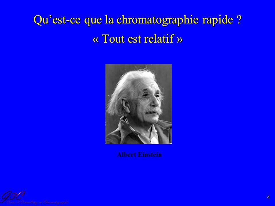 Qu'est-ce que la chromatographie rapide « Tout est relatif »