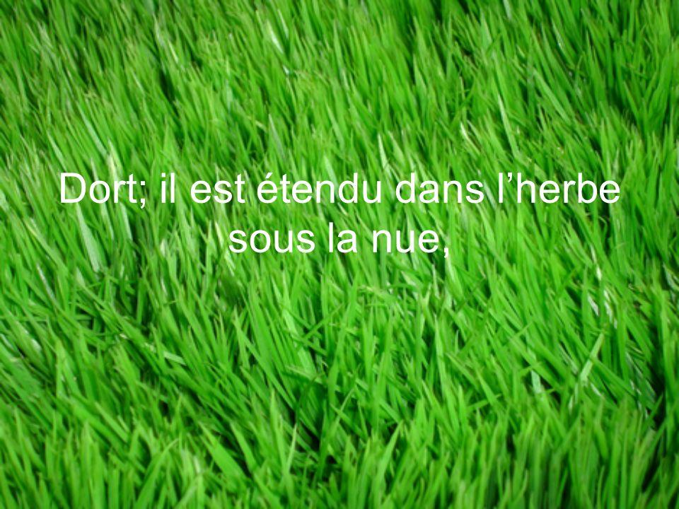 Dort; il est étendu dans l'herbe sous la nue,